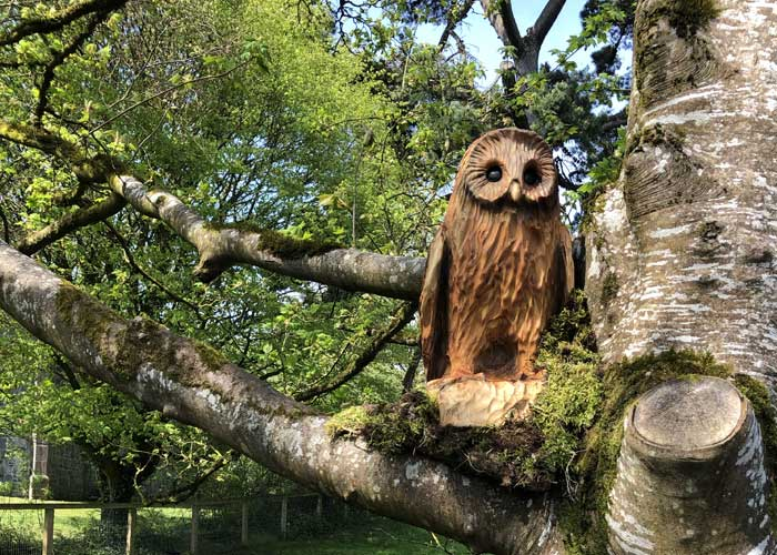 Fairy trail Bunratty Castle Owl