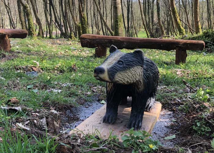 Todds Leap Trail -Badger