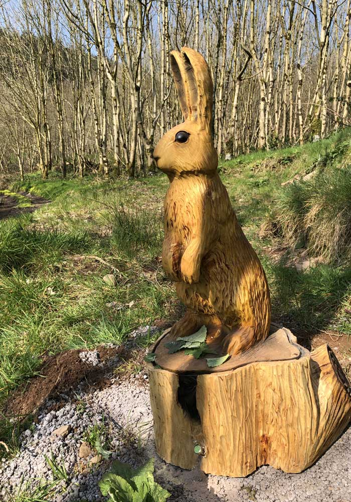 Todds Leap Trail -Hare