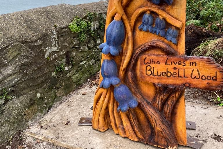 national trust bluebell wooden carving