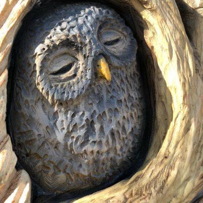 Loch Lomond Faerie Trail, Totem Barn Owl Carving